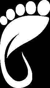 InFi : Ääretön elämä Vyöhyketerapia
